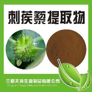 刺蒺藜提取物供应商天域生物