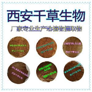 南鹤虱提取物 厂家生产动植物提取物定做天然浸膏