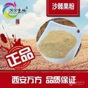 沙棘果粉   原料批发价格 厂家直销
