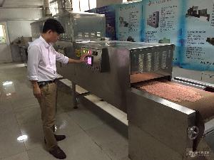 自动化济南微波豆腐猫砂烘干设备