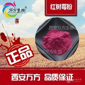 红树莓果粉/覆盆子果粉   天然原料提取  果蔬粉批发
