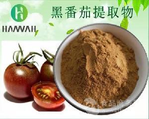 黑番茄提取物10:1 20:1 黑番茄浓缩粉 黑番茄花青素