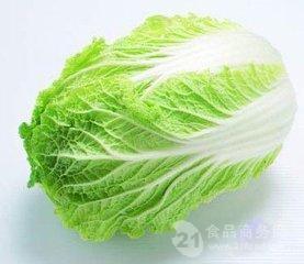 阿陀利/重慶 大白菜 畝產7500kg