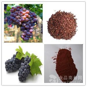 厂家供应葡萄籽提取物 葡萄籽速溶粉 包邮