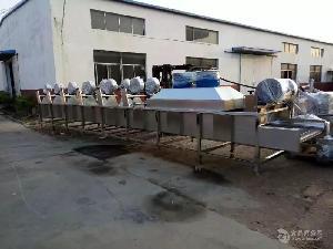 供应全自动涡流蔬菜清洗机 高压水浴蔬菜清洗机厂家直销