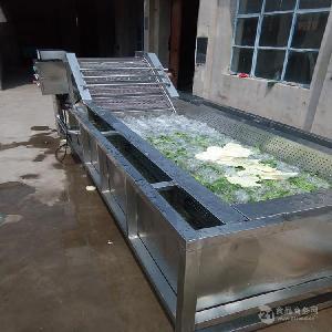 芝麻菜果蔬清洗设备