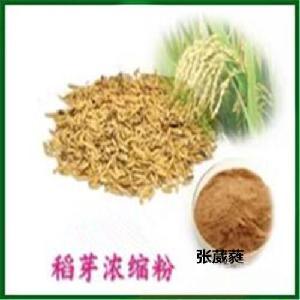 稻芽提取物 稻芽粉80目 稻芽速溶粉 稻芽浓缩粉