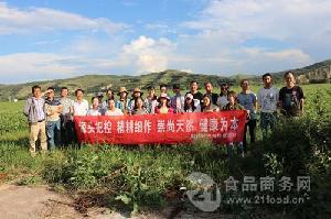 针叶樱桃提取物厂家现货销售 樱桃提取VC17% 樱桃高浓缩精粉