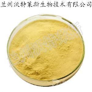 黄藤素98% 黄藤素  黄藤提取物