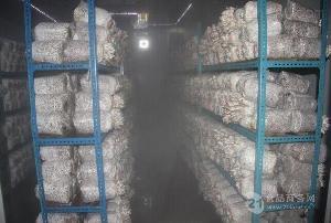 超声波蘑菇房工业加湿器