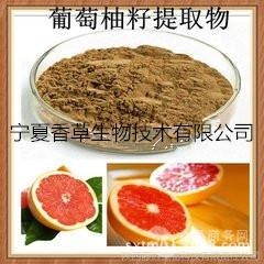 葡萄柚籽提取物10:1 葡萄柚籽速溶粉 葡萄柚籽浸膏粉 厂家直销