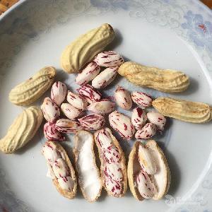 彝山香批发现挖现卖带壳原味云南新鲜七彩花