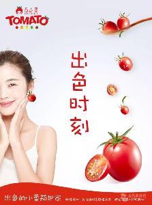 樱桃圣女果小番茄